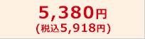 5,380円(税込5,918円)