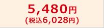 5,480円(税込6,028円)