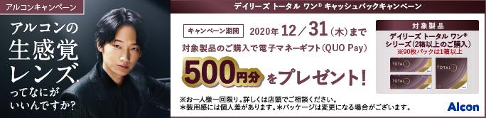 デイリーズ トータル ワン 500円キャッシュバックキャンペーン
