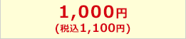 1,000円(税込1,080円)