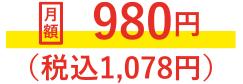 月額980円(税込1,078円)