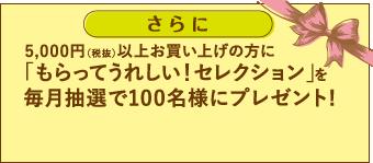 紹介でご来店の上5,000円(税抜)以上お買い上げの方に「もらってうれしい!セレクション」を毎月抽選で100名様にプレゼント!